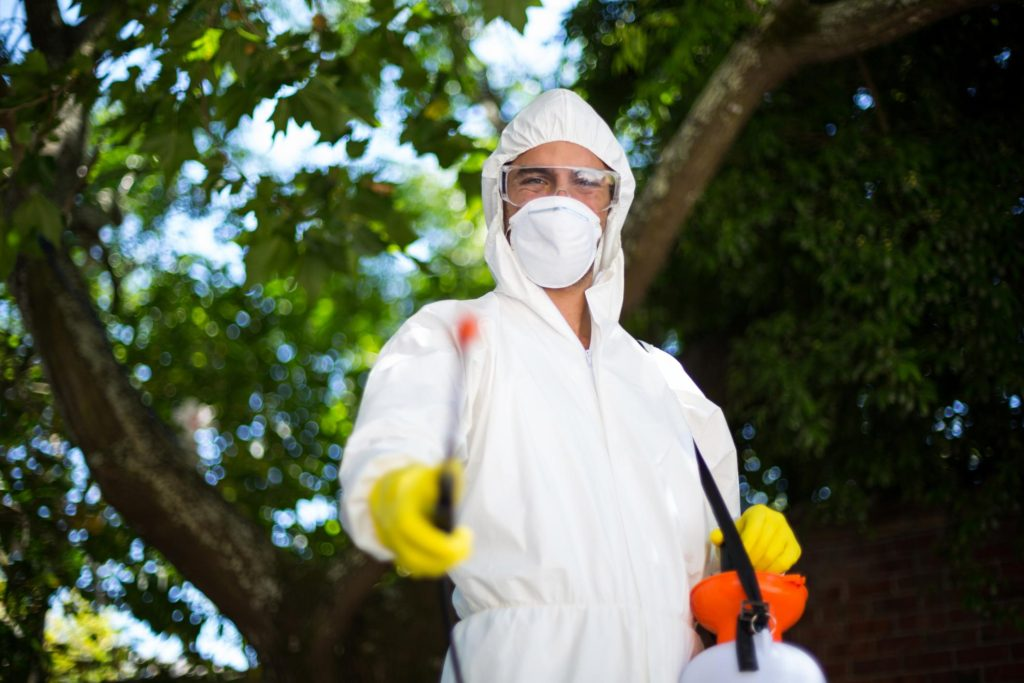Grapevine Tree Service - Insect and Disease Control 1